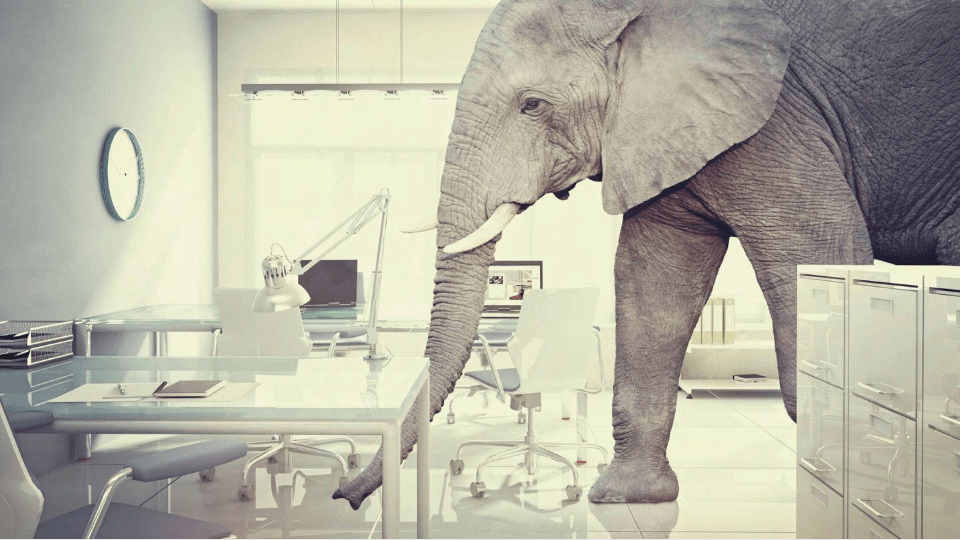 Elefanten-i-rommet
