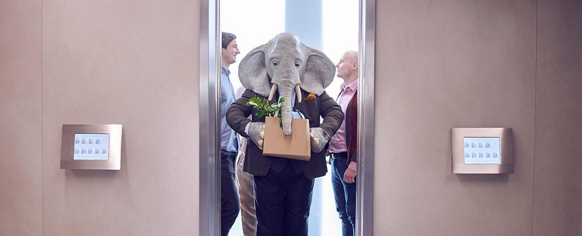 Fjern elefanten i rommet