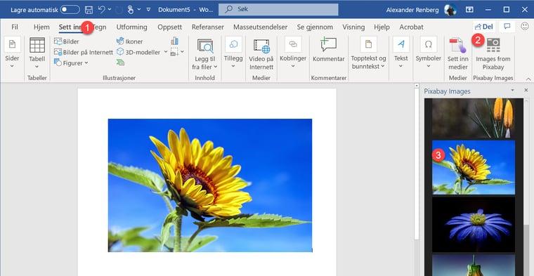 Hvordan sette inn GRATIS Pixabay bilder i Powerpoint og Word 5