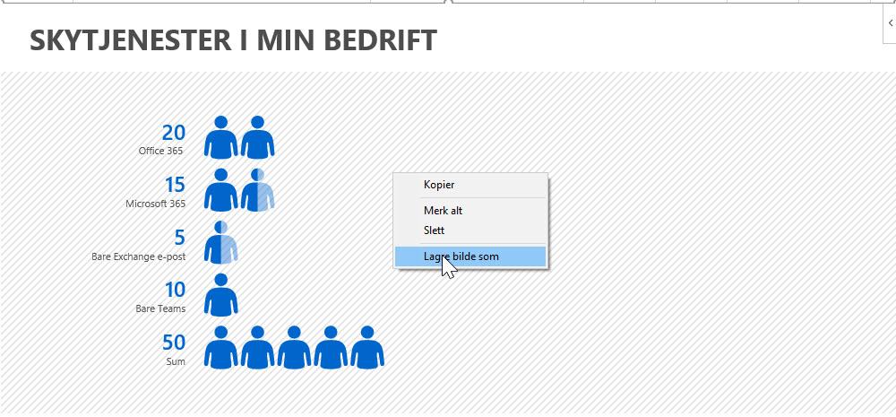 Slik bruker du People Graph i Excel 11