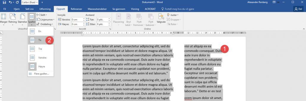 hvordan-bruke-spalter-og-kolonner-i-word-2