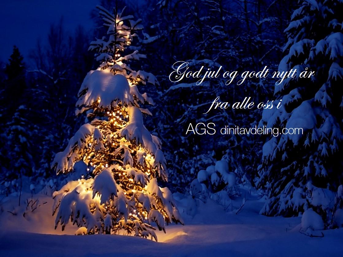 God Jul fra alle oss i AGS dinitavdeling.com
