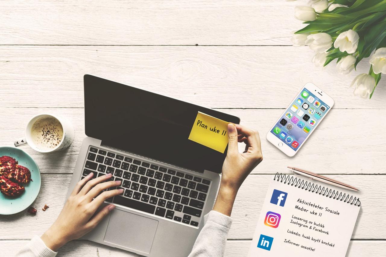 Bli bedre kjent med brukertall i sosiale medier